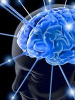 Займемся саморазвитием мозга